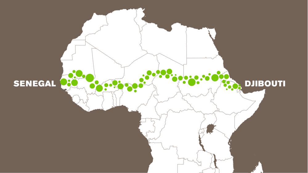 Great Green Wall Projekt